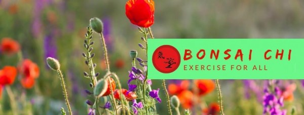 Bonsai Chi - Exercise for All