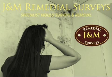 J&M Remedial Surveys - Specialist Mould Surveys & Removal