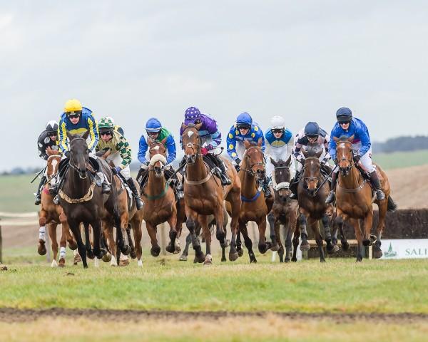 Andoversford Races horses