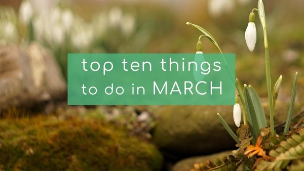 Top Ten Things To Do In March 2019