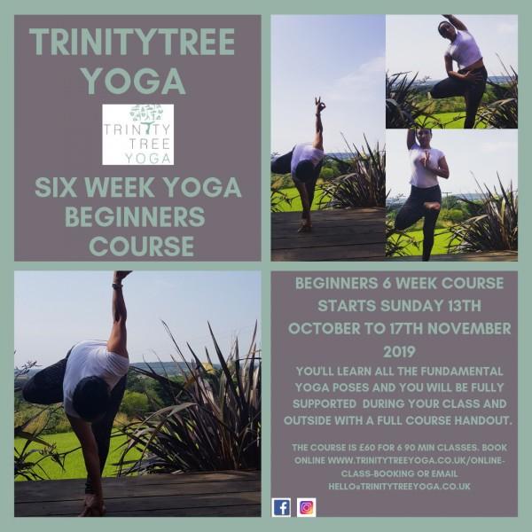 beginners-six-week-course-trinity-tree-yoga.jpg