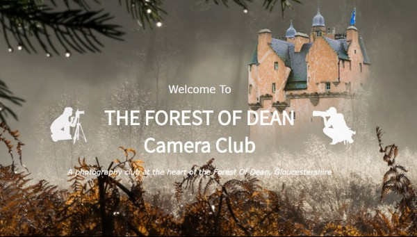 camera club forest of dean
