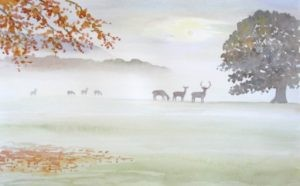 deer-in-misty-field.jpg