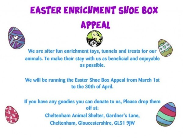easter enrichment shoe box appeal for charity help animals welfare glos,info easter 2019