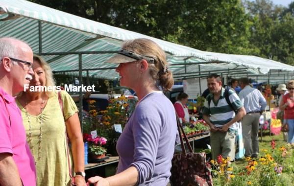 farmers-market-frampton.jpg