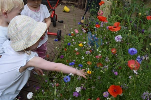 glos.info Bright Eyes Day Nursery Cheltenham flowers