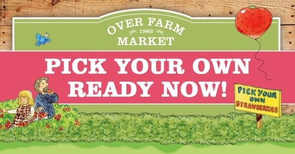 glos.info Over Farm Market Pick Your Own Strawberries and Raspberries