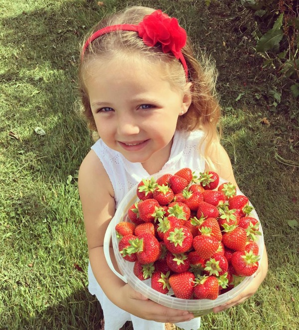 glos.info Over Farm Pick Your Own Strawberries Reusable bucket golden strawberry