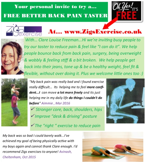 glos.info zigs exercise better back pain 1