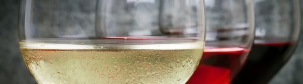 Cheltenham Wine Festival 2020