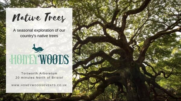 native-trees-tortworth.jpg