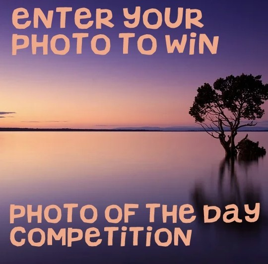 MONTHLY COMPETITION - Send us photos to be featured as Pet of the Day - one photo will be chosen to win a £10 Amazon Gift Card
