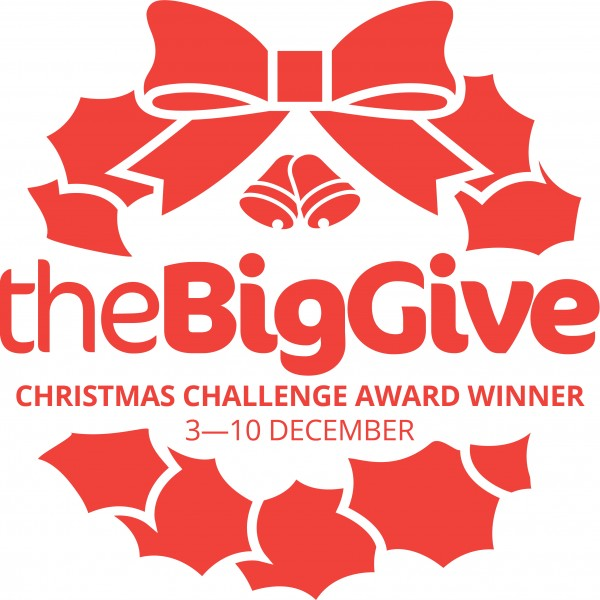 the-big-give-christmas-challenge.jpg