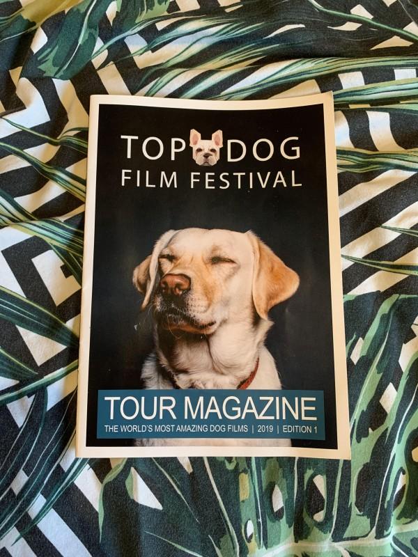 top-dog-film-festival-1.jpg