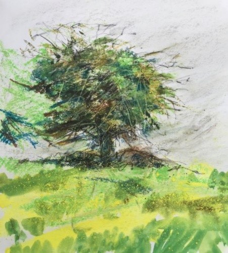 watercolour-sketchbook-prema.jpg