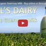 Nell's Dairy - Organic Guernsey Milk - video