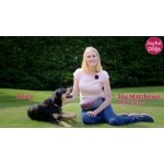 """Joyful Dogs – Dog & Puppy Training""  (with training video)"