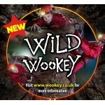 Wild Wookey Caving at Wookey Hole