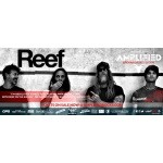 REEF confirmed as Sunday headliner at Amplified Open Air Festival