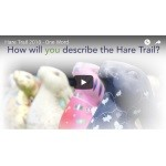 Cotswolds AONB Hare Trail 2018 - One Word