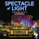 Spectacle of Light - A Wonderful Experience for all Ages - BOOK IN ADVANCE & SAVE 10%