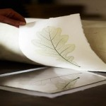 Two Day Nature Printing Workshop with Pia Östlund: Cotswolds