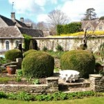 Rare Plant Fair - The Old Rectory, Quenington in aid of Cobalt Health