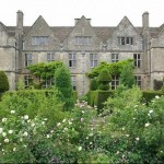 Rare Plant Fair - Rodmarton Manor