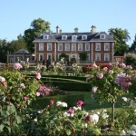 Rare Plant Fair-  Highnam Court in aid of Cobalt Health