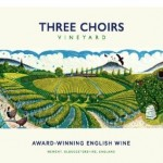 BID NOW AUCTION LOT: A vineyard tour and tasting voucher for 2 people at Three Choirs Vineyard