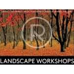 RESERVED AUCTION LOT: A three day residential weekend outdoor landscape photography workshop in the Lake District from Alan Ranger Photography
