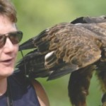 Talk: Birds of Prey Adaption for flight & feathers