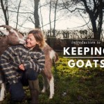 Introduction to Keeping Goats