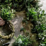 Sold Out: Christmas Wreath Making: Pimlico