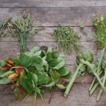 Sustainable floristry arrangements: Cotswolds