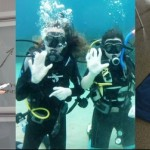 Red Turtle Training - History & Politics A Level & GCSE Tutoring. Scuba Diver Training. First Aid Training