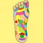 A BEGINNER'S GUIDE TO REFLEXOLOGY                     CPD: 10 hours