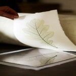 Nature Printing With Pia Östlund: Cotswolds