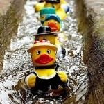 Annual Rubber Duck Race - Sunday 12th January 2020