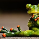 Have a hopping good time at Gloucestershire frog racing fundraiser