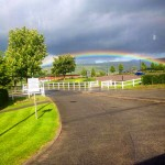 Rainbow over the Racecourse - Photo