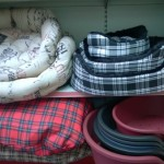 10% off all dog beds starting from £6.99 - £54.99.
